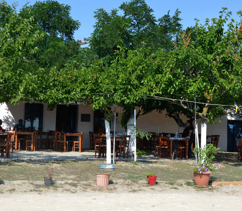 Λήμνος: Καφενεία