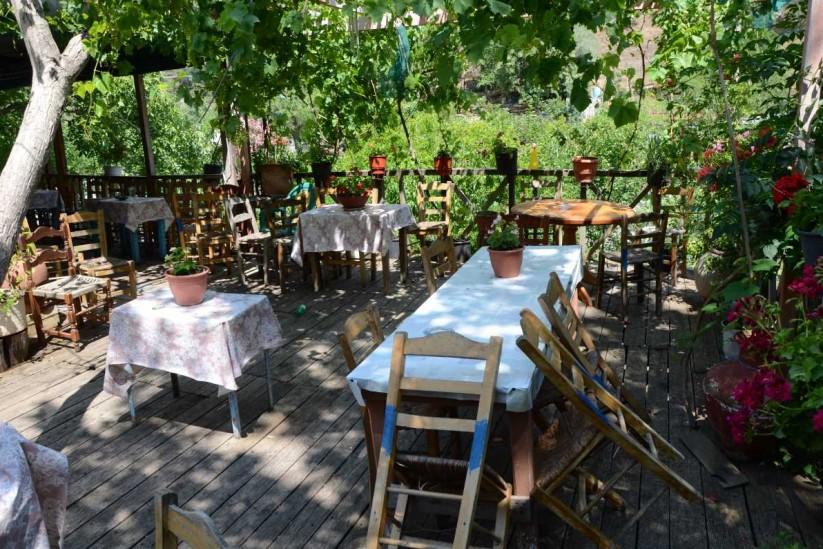 Καφενείο της κυρά Ρήνης