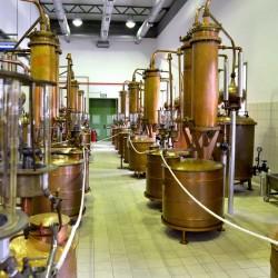 Ούζο Πλωμαρίου Ισιδώρου Αρβανίτου