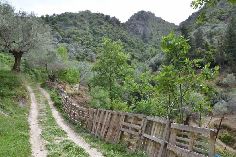 Ταβέρνα ο Ντουνιάς στην Κρήτη