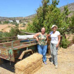 Αγρόκτημα Καμάρανθο - Πάρος - Greek Gastronomy Guide