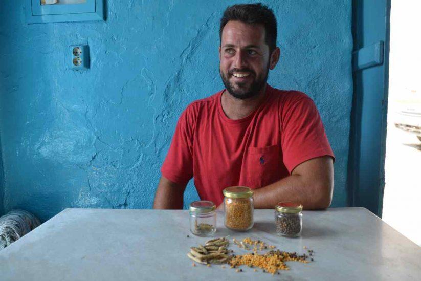 Φάβα Σχοινούσας (κατσούνι) - Greek Gastronomy Guide