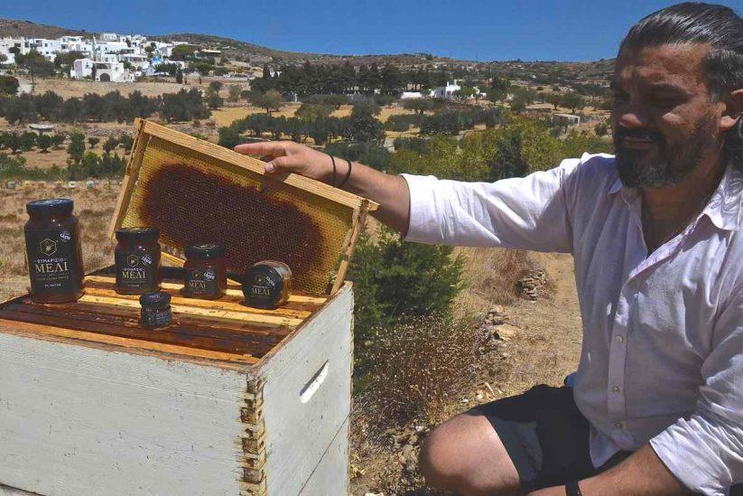 Μέλι εκ Πακτίας (Μέλι από την Πάρο) - Greek Gastronomy Guide