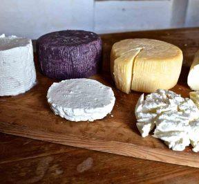 Τυριά Πάρου (Παριανά τυριά) - Πάρος - Greek Gastronomy Guide