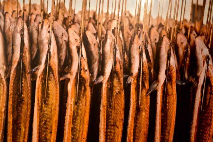 Ιχθυοκαλλιέργειες - Βαγγέλης Γείτονας & ΣΙΑ Ε.Ε. - Ψαθοτόπι Άρτας - Greek Gastronomy Guide