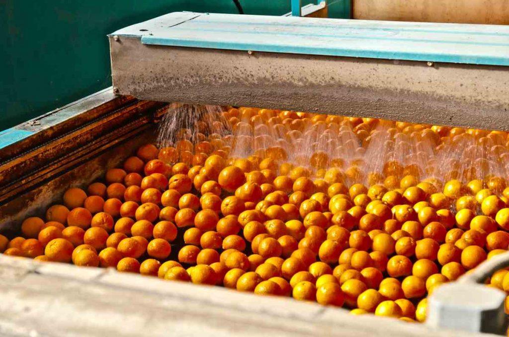 Krop Fruit - Επεξεργασία και συσκευασία εσπεριδοειδών - Άρτα - Greek Gastronomy Guide