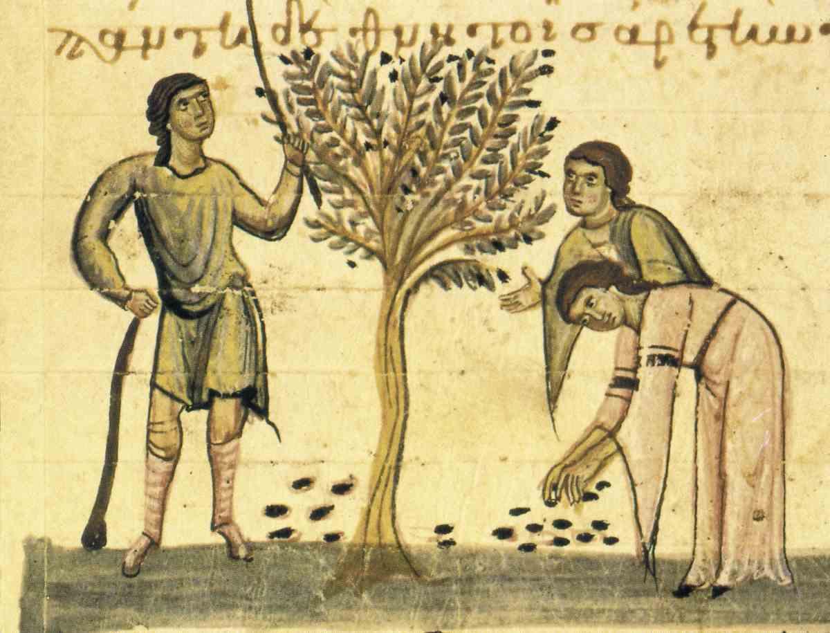 секреты молодости кожи греков