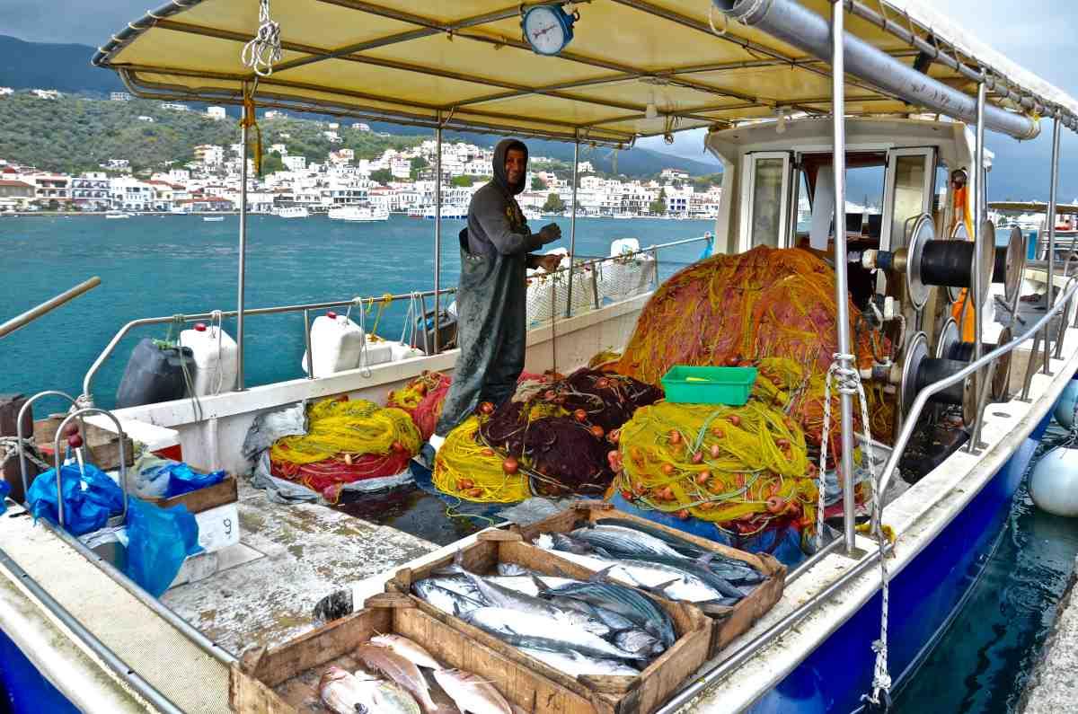 Δημοτική Αγορά Πόρου - Πόρος - Greek Gastronomy Guide