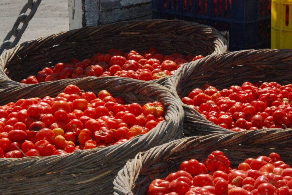To κόκκινο του ελληνικού καλοκαιριού - Greek Gastronomy Guide