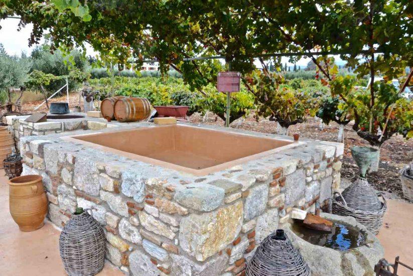 Οινοποιείο Χατζηεμμανουήλ - Ασφενδιού, Κως - Greek Gastronomy Guide