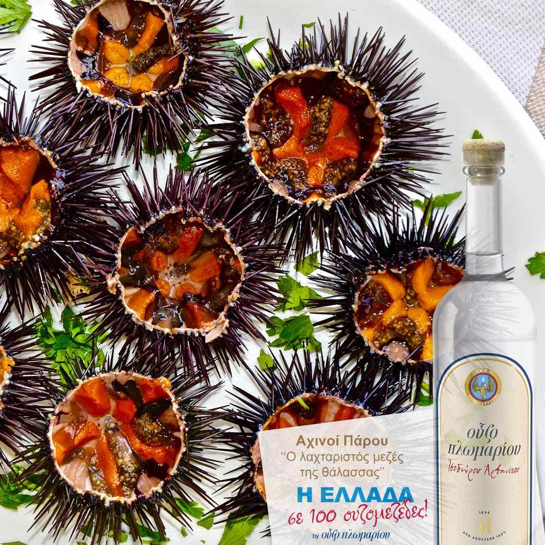 Αχινοί - Ουζομεζέδες - Greek Gastronomy Guide