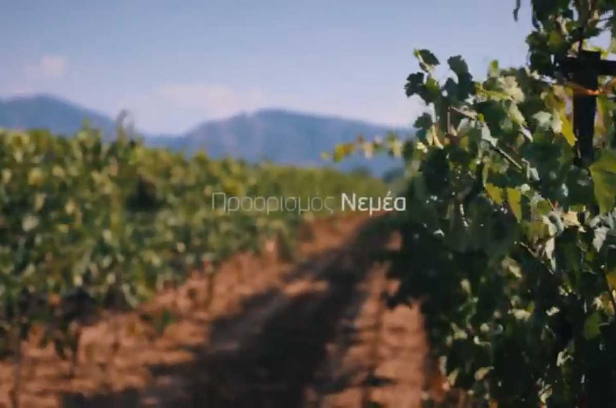 Προορισμός Νεμέα (βίντεο) - Greek Gastronomy Guide