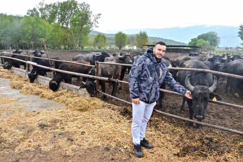 Kerkini farm - Λίμνη Κερκίνη - Greek Gastronomy Guide