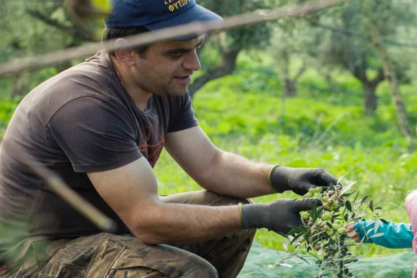 Lia Cultivators - Κωνσταντίνος και Χριστίνα Στριμπάκου - Φιλιατρά, Μεσσηνία - Greek Gastronomy Guide