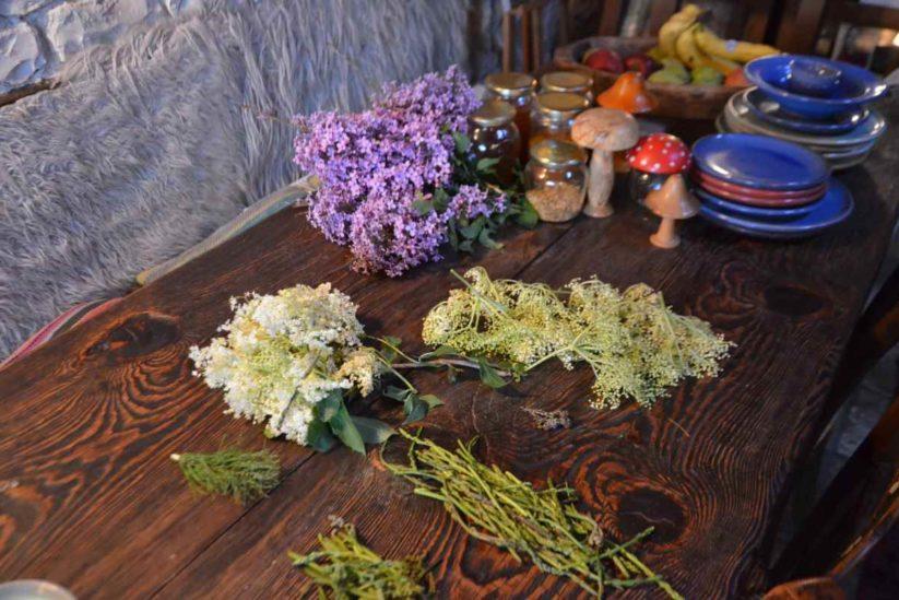Σαμπούκος σε κουρκούτι (κουφοξυλιά) - Ζαγόρι - Greek Gastronomy Guide