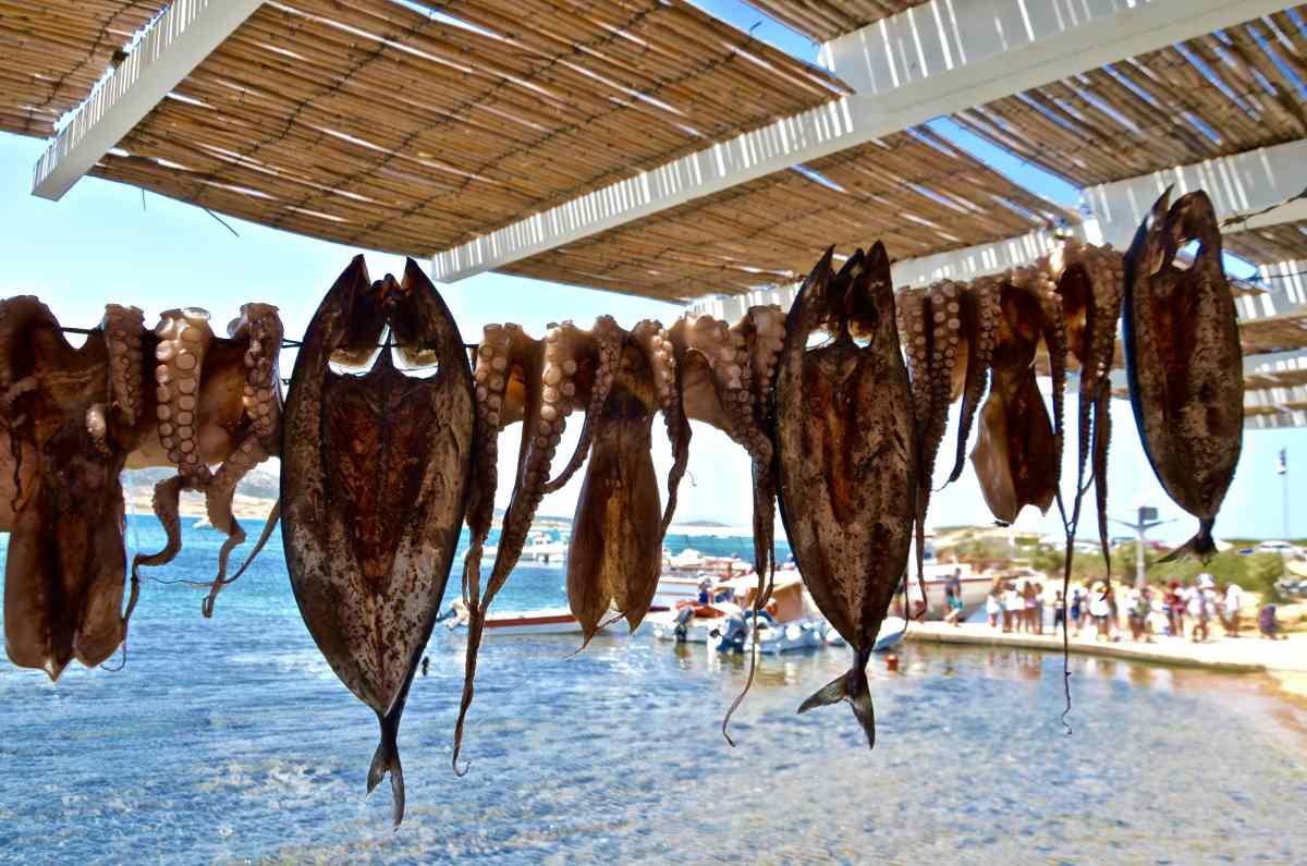 Χταποδάκι μεζές - Greek Gastronomy Guide