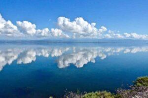 Τα μυστικά στη λιμνοθάλασσα του Αμβρακικού - Greek Gastronomy Guide